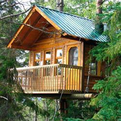 maison dans les arbres tude vente am nagement maison cabane observatoire dans les arbres. Black Bedroom Furniture Sets. Home Design Ideas